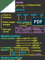 Enzimopatias_DR_CHIAPPE
