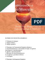 Neurotransmissão e Contração Muscular_EC2017.pdf