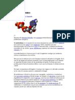 METABOLISMO.doc