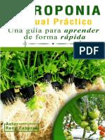 LIBRO Hidroponia Rene Cabezas.pdf