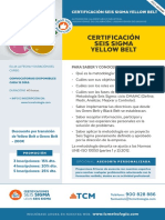 Certificacion-Yellow-Belt