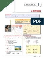 FICHA 01 LENGUAJE PRIMERO.pdf