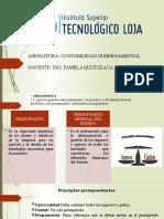 SEMANA 4 GUBERNAMENTAL (1).pptx