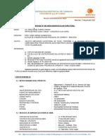 INFORME N° 002 SUSTENTO DE AMPLIACION EXCEPCIONAL DE PLAZO.pdf