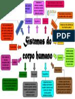 Mapa-mental-sistemas-do-corpo-humano-1