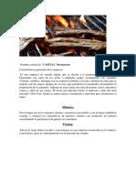 Actividad 1. Yadira Alvarado.primero A..pdf