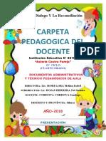 CARPETA PEDAGOJICA DEL DOCENTE 2018.docx
