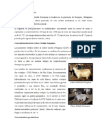 Cabra Criolla Neuquina