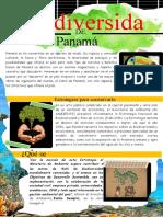 biodiversidad de panama12