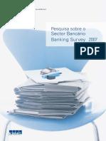 Mozambique bank survey 2007