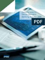 Mozambique bank survey 2008