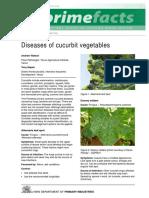 diseases-of-cucurbit-vegetables