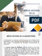 BREVE HISTORIA DE LA MAMPOSTERIA-