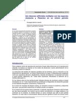 Cachama y Morocoto desoves artificiales múltiples