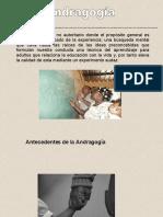 PPT ANDRAGOGIA 3.pdf