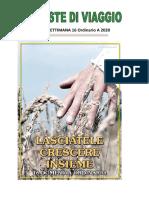 provviste_16_ordinario_a_2020.doc