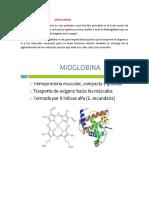 COLAGENO Y MIOGLOBINA.docx