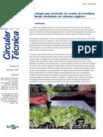 Tecnologia para produção de mudas de hortaliças.pdf