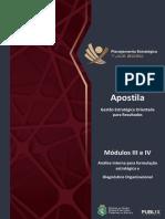 Apostila - Módulos 3 e 4 (Análise Organizacional)