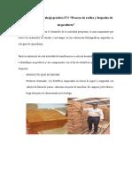 EVIDENCIA de proceso de recibido y despacho.docx