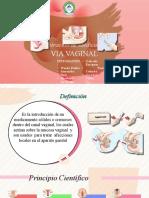 EXPOSICION_VIA_VAGINAL