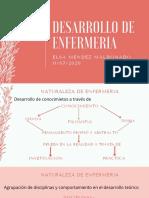 desarrollo de enfermeria (1)