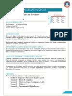 02-IngSistemas-2014-GD-007-Algebra Lineal
