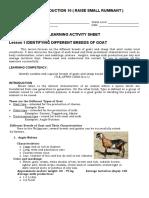 ANIMAL-PRODUCTION-10-LAS.docx