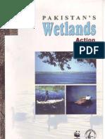 Wetlands Action Plan -Pakistan