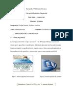 CAPILARIDAD (1).docx