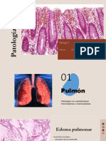 sistema respiratorio patologias