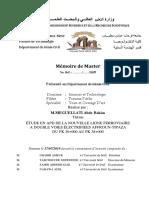 Mémoire fin d'étude -Chemin de fer-génie civil