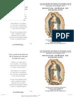 FO-007-Las-46-Estrellas-de-Ntra-Sra-de-Guadalupelog.pdf