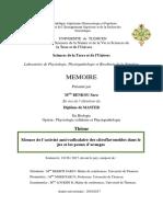 Mon_mémoire_SB.pdf
