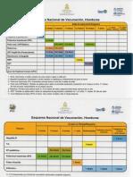 Nuevo-Esquema-Nacional-de-Vacunacion.pdf
