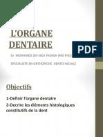 2-L'organe dentaire