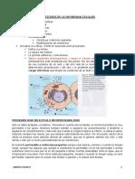 6. Funciones de la membrana celular