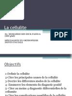 cellulite - Copie