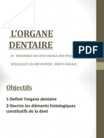 2-L'organe dentaire.pdf