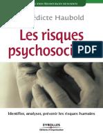 Les Risques Psychosociaux.pdf