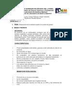 PROYECTO LABORATORIO- GRUPO C - MUZZIO- PALACIOS-VALVERDE Paralelo 52