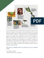 atividade1 biologia - classificação dos seres vivos