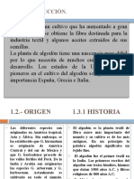 expo algodon II.pptx