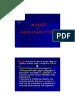 Protesi - allergie