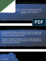 presentación modelo ecológico