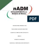 IDIP_U3_EA_CDHO.docx
