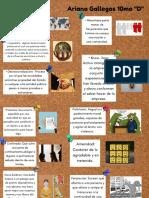 White Blue Note Taking Graphic Organizer.pdf