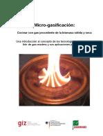 micro-gasificacion.pdf
