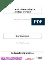 2020 LABORATORIO histologia oral-2