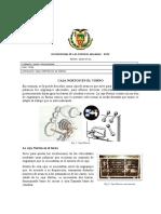 Caja Norton - Pachacama Danny